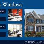 chinook-windows-trade-display
