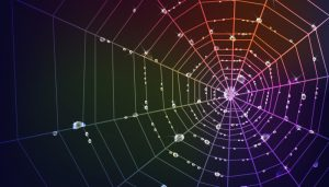 spider-web-img